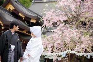 Imamiya shirine Kyoto