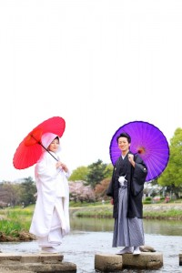 purple and red umbrella