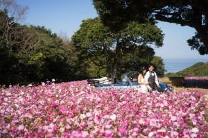 Pre wedding in Fukuoka by Saki wedding