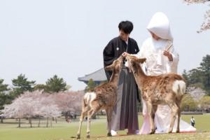 Photo Studio Watanabe