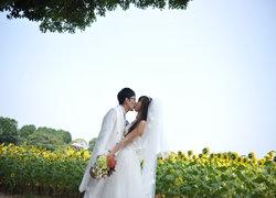 Saki Wedding