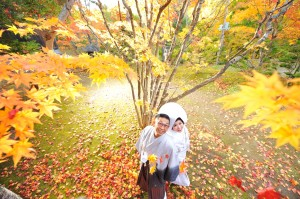 Hokkaido pre wedding in maple leaf season