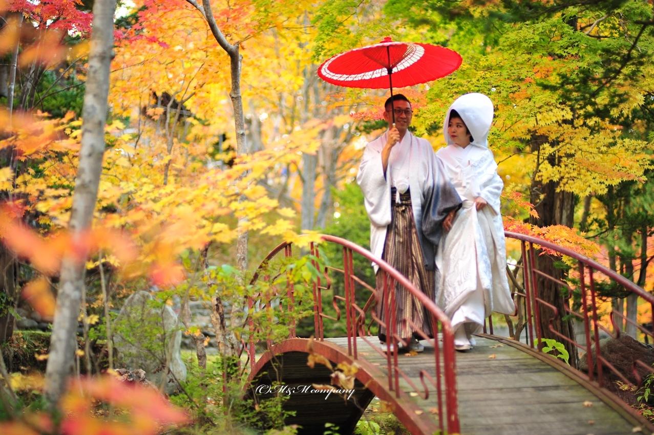 Pre wedding in maple leaf season