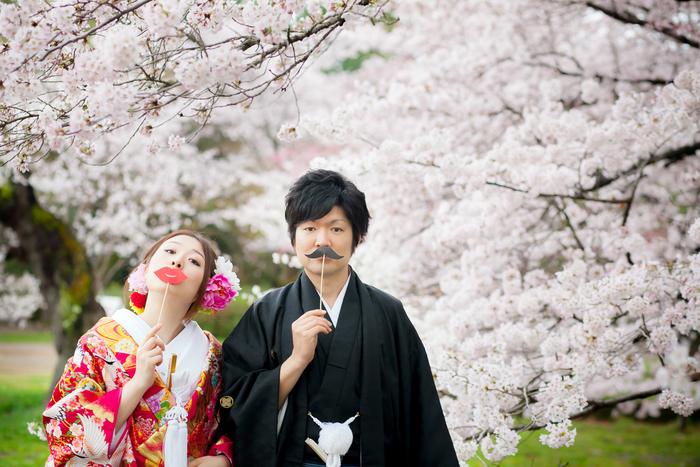 Cherry blossom scene in Kyoto