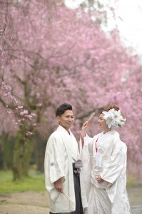 Couple in sakura scene