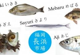 Fukuoka Fish Market