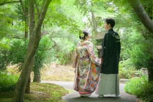 Hanamusubi green colored landscape