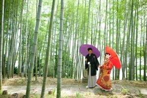 Azekura bamboo landscape
