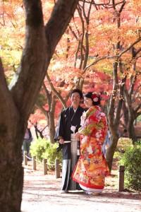 maple leaf season in Kyoto