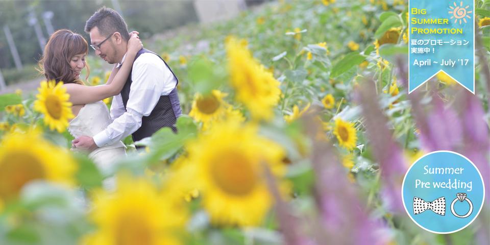 Sunflower of Hokkaido's summer