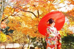 one of the best season in Kyoto