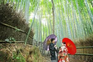 bamboo forest of Arashiyama