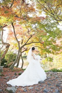 Autumn scene with maple leaf
