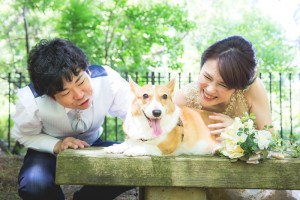 Hi cute doggy. Be happy together.