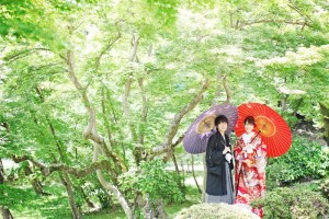 Visit Hikone. That's nice place!