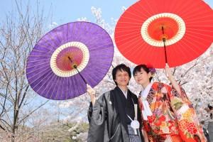pre wedding in cherry blossom scene