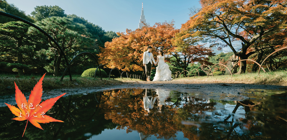 Pre wedding in autumn at Tokyo