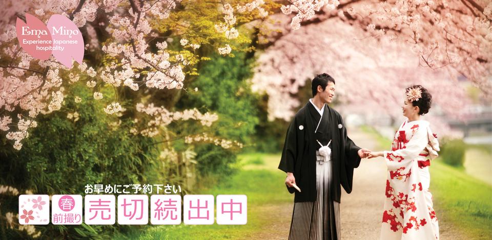 Kyoto Kamogawa cherry blossom