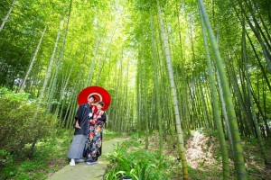 Pre wedding in bamboo scenery