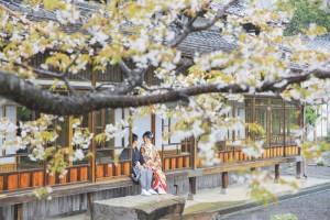 Sakura scenery in Kagoshima