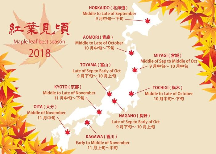 Autumn forecast of 2018