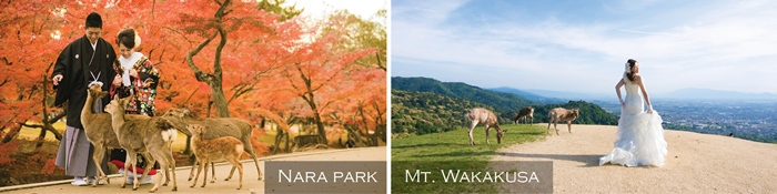photo shooting spots in Nara