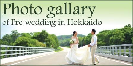 Hokkaido fallery