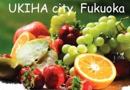 Ukiha city Fukuoka