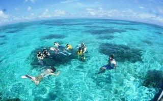 snorkeling in Okinawa