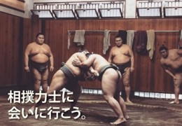 Visit sumo stable