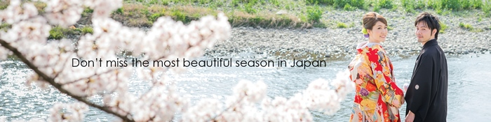 Don't miss the most beautiful season in Japan