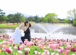 Flower garden in Fukuoka